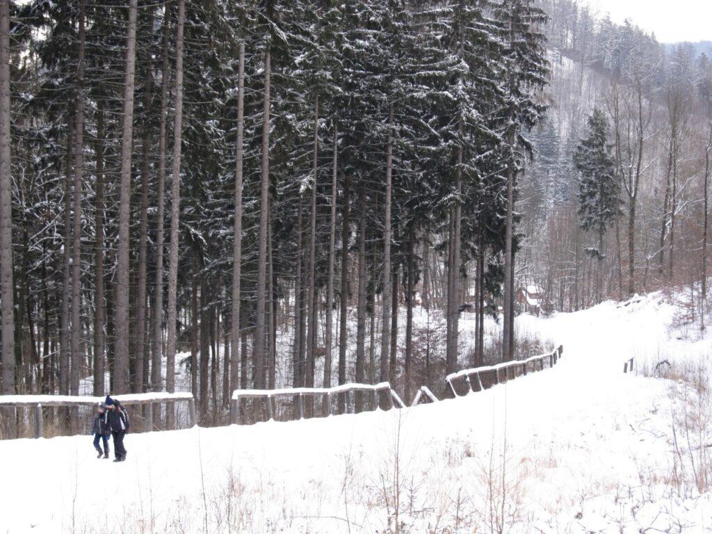 Zima w Zagórzu Śląskim 1 - Chata za Górami