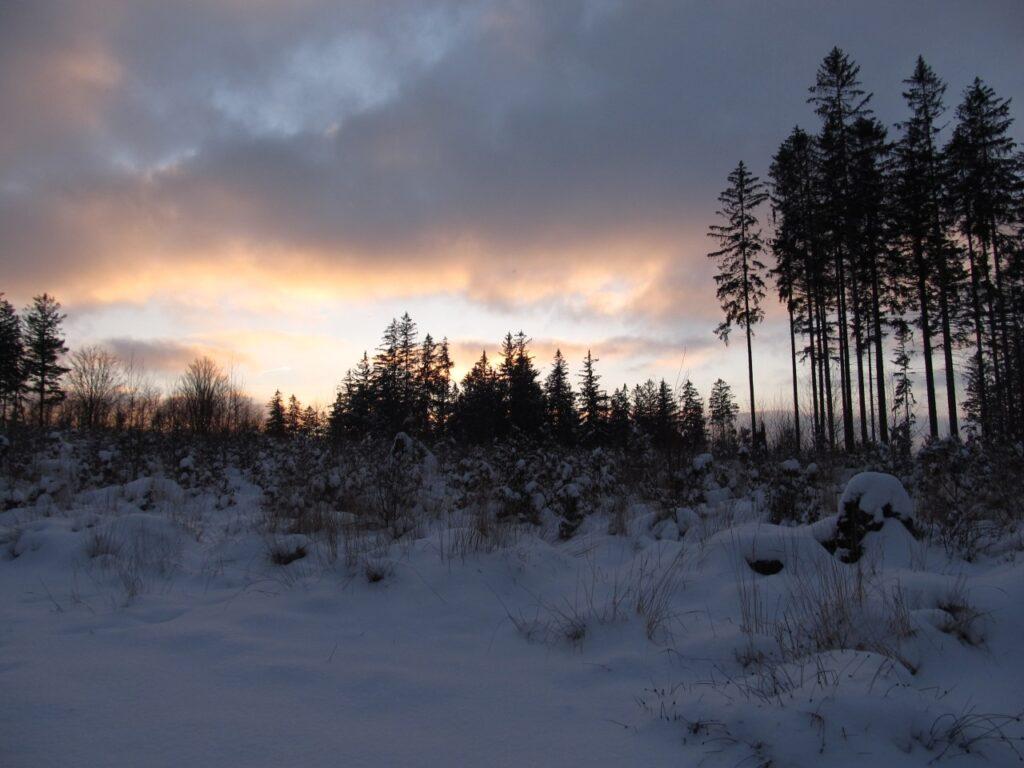Zima w Zagórzu Śląskim 3 - Chata za Górami